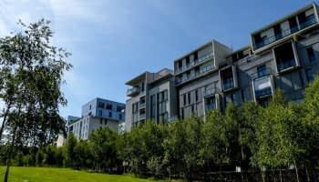 Immobilier à Lyon : une valeur sûre