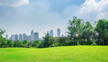 Smart City : la ville de demain est une ville vivante
