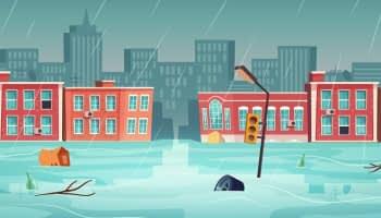 Smart City : zoom sur la ville éponge et ses paradoxes