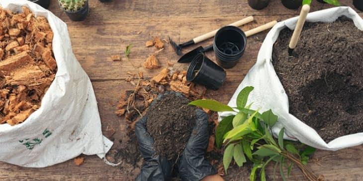 Aménager un jardin d'hiver pour un cocon 100% personnalisé