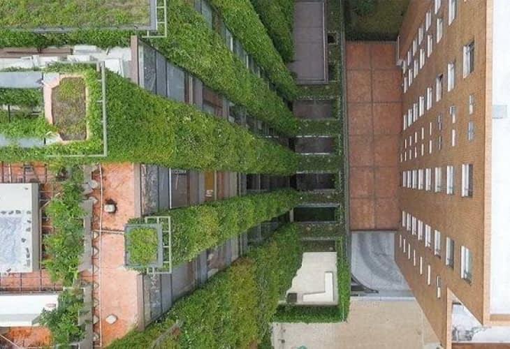 À la découverte des jardins suspendus de Bogota