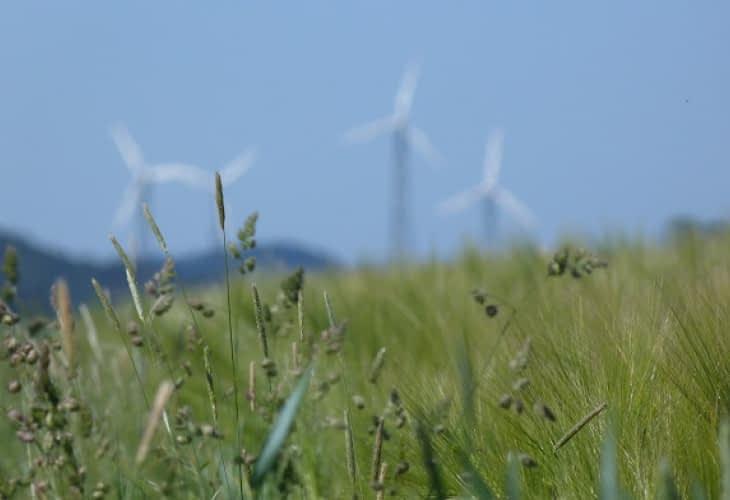 Ardèche : des habitants impliqués dans la construction d'un parc éolien