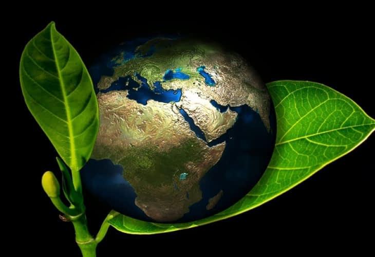 COP22 : Emmanuelle Cosse annonce un programme franco-allemand pour le PEEB