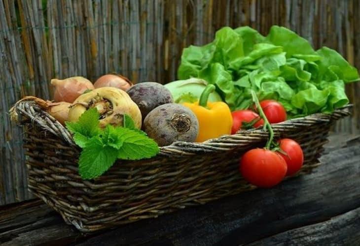 Développement de l'agriculture urbaine, tous locavores demain !