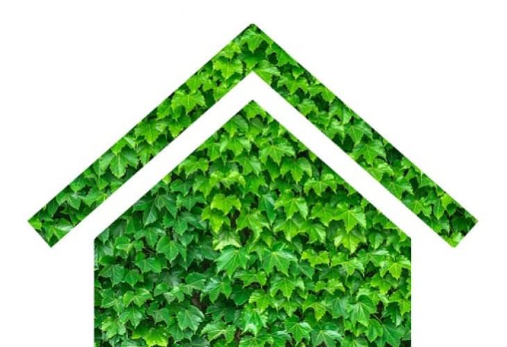 Eco-habitat : un ménage vert pour une maison écologique