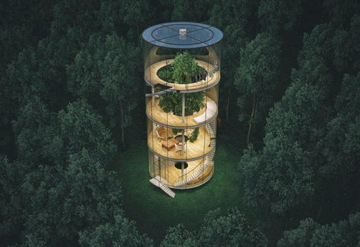 Éco-habitat : une maison dans les arbres au Kazakhstan