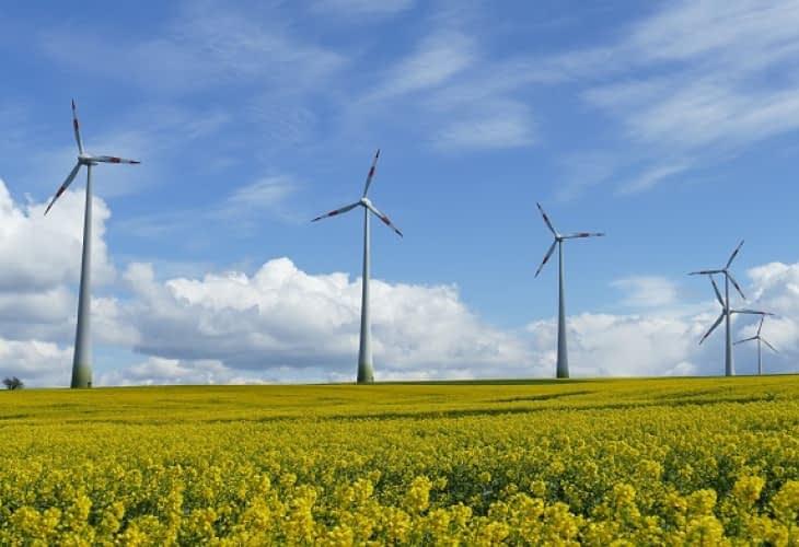 Énergie éolienne : une filière puissante en France
