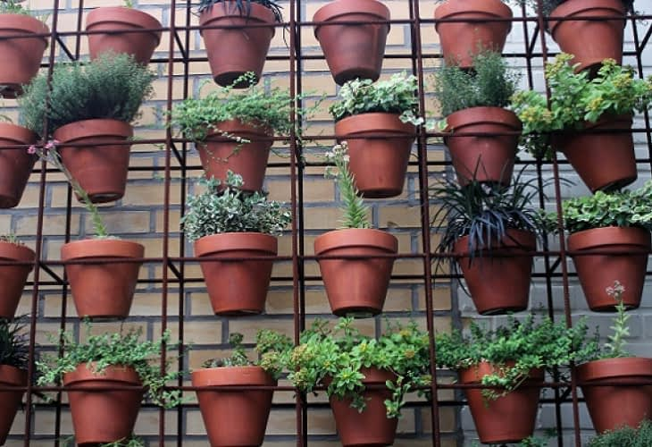 Smart City : la végétalisation cherche son modèle viable