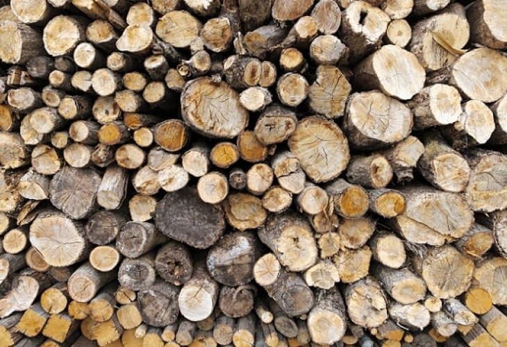 Immobilier neuf : les objectifs ambitieux de la filière bois