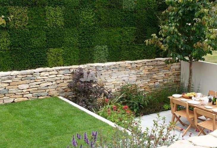 Le mur végétal, tendance esthétique et écologique à adopter chez soi