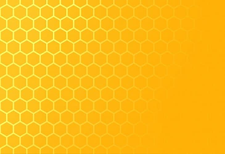 Les appartements ruches bientôt à Paris ?