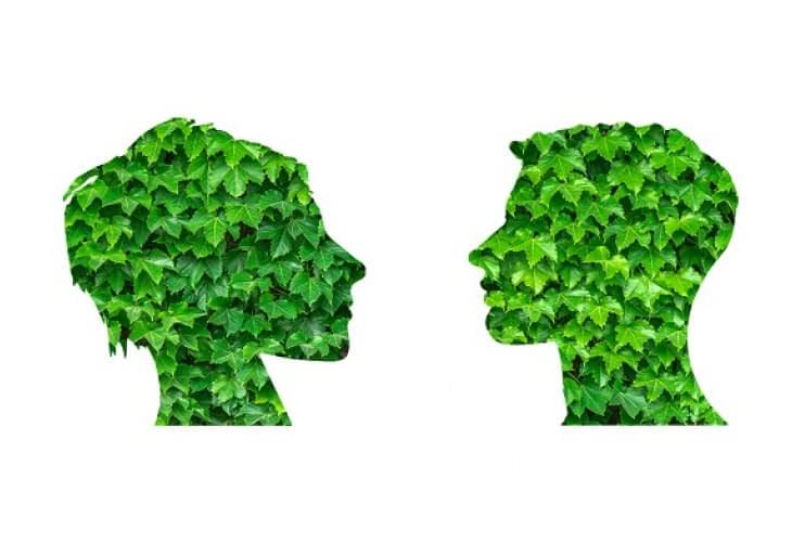 Les nouveaux métiers de l'immobilier : l'éco-gestionnaire