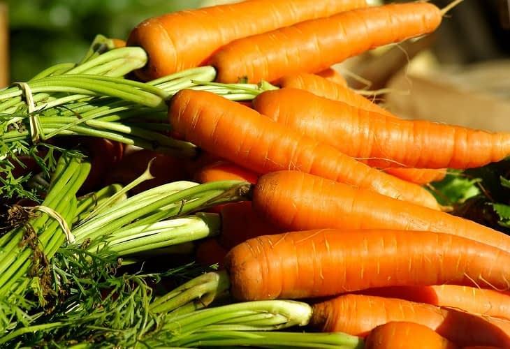 Potager vertical : récolter des légumes sur les toits des grandes entreprises