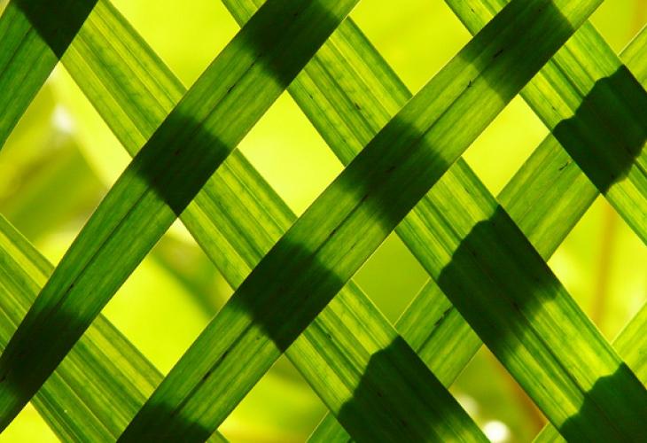 Rénovation énergétique : les isolants écologiques ont la cote