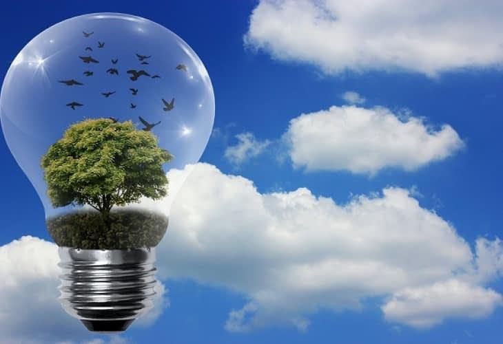 Utilisation des énergies renouvelables : la France est en retard