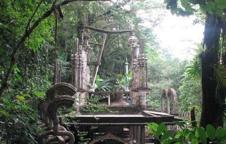 Excursion au cœur de la jungle mexicaine