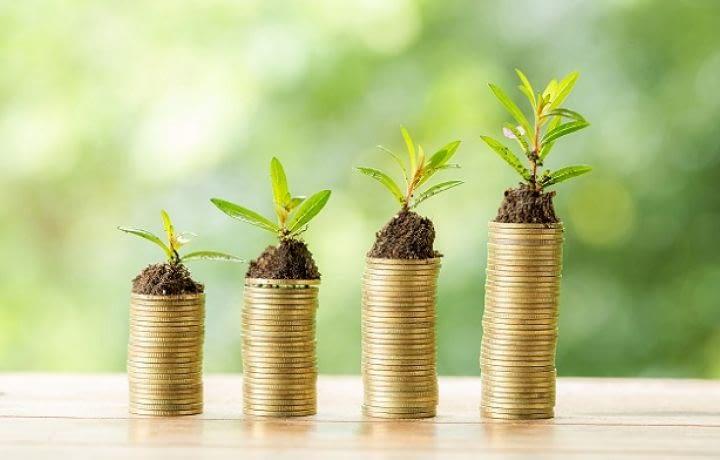 Logement neuf : entre économies et écologie