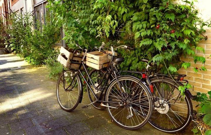 Smart City : la mobilité écolo au service de la ville